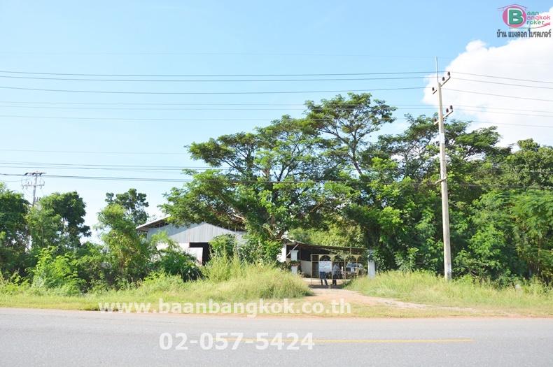 ขาย/ให้เช่า ที่ดิน+โรงงาน+บ้าน เนื้อที่ 3-3-26 ไร่ ถนน บ่อพลอย-อู่ทอง อ.ห้วยกระเจา จ.กาญจนบุรี
