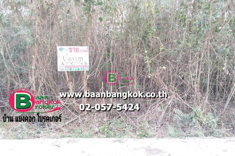 ขาย ที่ดินเปล่า ถมเเล้ว เนื้อที่ 50 ตรว. ริมคลองไผ่ขวาง ถนนสุพรรณบุรี-ป่าโมก เขตเมืองสุพรรณบุรี