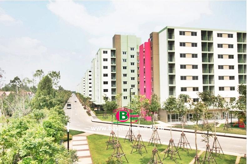 คอนโดมิเนียม โครงการ ลุมพินี ทาวน์ชิป-รังสิต คลอง 1 Lumpini Township Rangsit-Klong 1 เนื้อที่ 26 ตรม. ถนนรังสิต-นครนายก ธัญบุรี ปุทมธานี