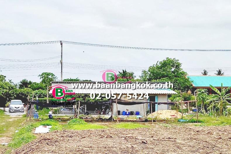 ขาย ที่ดิน+บ้านเดี่ยว 1 ชั้น พร้อมอยู่ เนื้อที่ 3 ไร่ (1200 ตรว.) มี 2 ห้องนอน 1 ห้องน้ำ 1 ห้องครัว 1 ห้องรับเเขก เลี่ยงเมืองวงเเหวนรอบนอกจ.สุพรรณบุรี ถนนสาย 357 อ.เมือง จ.สุพรรณบุรี