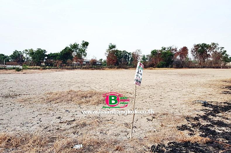 ขาย ที่ดิน ถมเเล้ว เนื้อที่ 400 ตรว. ซ.บงกช 26 ถนนรังสิต-นครนายก อ.คลองหลวง จ.ปทุมธานี