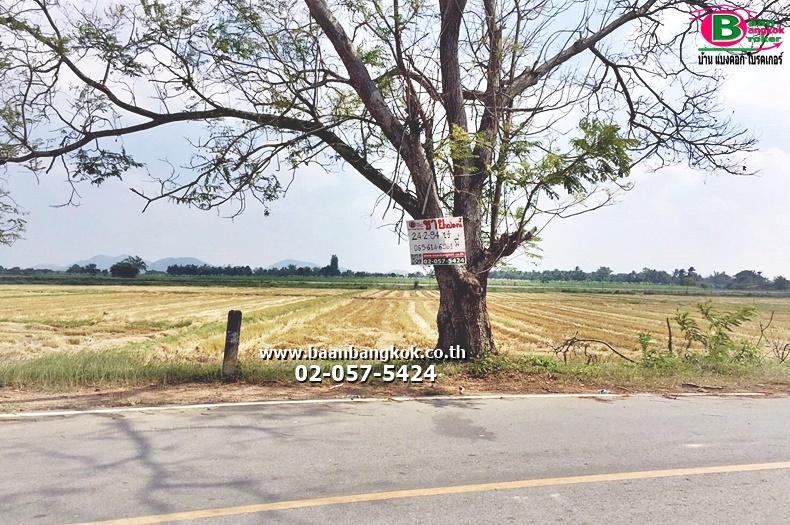 ขาย ที่ดินเปล่า เนื้อที่ 24-2-94 ไร่ ร.ร.บ้านเกาะคู่ ถนนเพชรเกษม อ.ปราณบุรี จ.ประจวบคีรีขันธ์