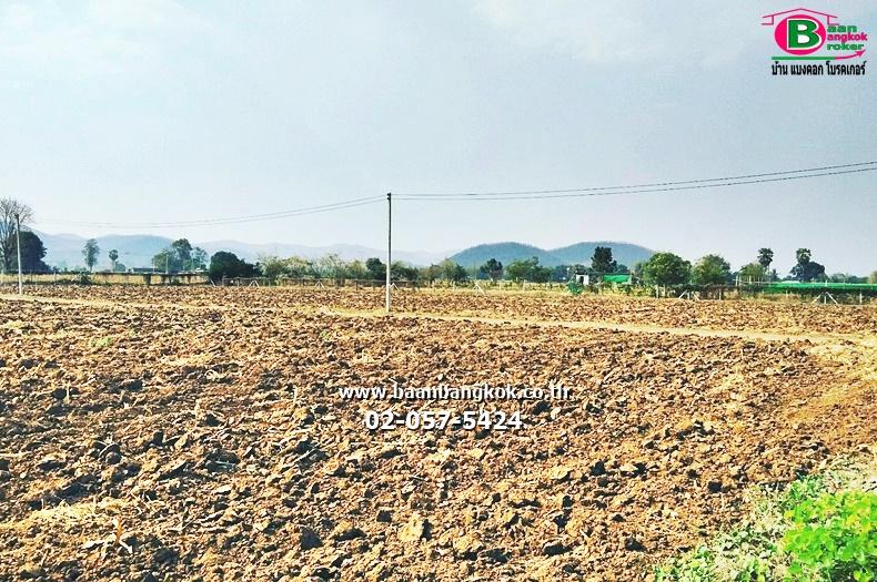 ขาย ที่ดินถมแล้ว เนื้อที่ 3 ไร่ หลังหมู่บ้านหนองตาลัย อ.อู่ทอง จ.สุพรรณบุรี