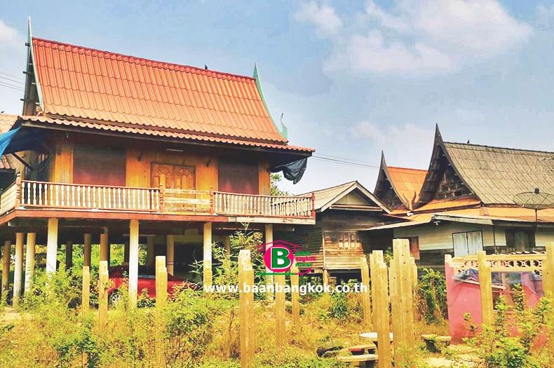 ขาย ที่ดินพร้อมบ้านเดี่ยวทรงไทย 1 ชั้นยกสูง บริษัท เบียร์ทิพย์  เนื้อที่ 100 ตรว. บางบาล อยุธยา