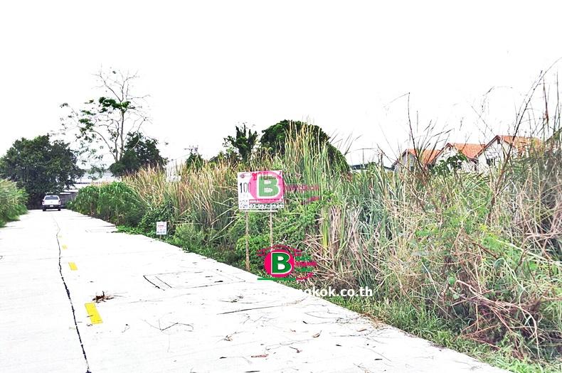 ที่ดินเปล่า ซอยไสวประชาราษฎร์ 7 (อ่อนเปรี้ยว) เนื้อที่ 100 ตรว. ถนนลำลูกกา ปทุมธานี