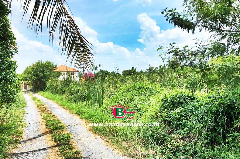 ที่ดินเปล่า ติดถนนโยธาธิการ นนทบุรี 2023 (ซอยอ้อมเกร็ด) เนื้อที่ 157.8 ตรว. ถนนราชพฤกษ์ ปากเกร็ด นนทบุรี