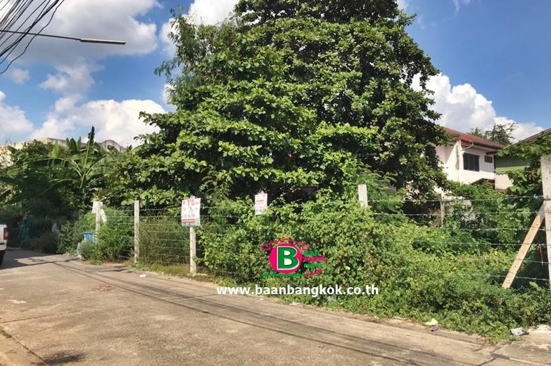 ที่ดินเปล่า ชุมชนจามรร่วมใจสามัคคี ลำลูกกา 4 ซอยจามร ก 9 เนื้อที่ 56 ตรว. ถนนลำลูกกา อ.ลำลูกกา จ.ปทุมธานี