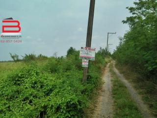 04063, ที่ดินถมแล้ว ซอยวัดราษฎร์บำรุงศักดิ์ เนื้อที่ 70 ตรว. ถนนองค์รักษ์-บางน้ำเปรี้ยว อ.บางน้ำเปรี้ยว จ.ฉะเชิงเทรา