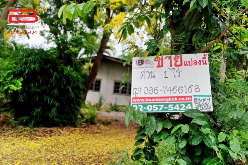ที่ดินเปล่า วัดหนองอ้อตะวันตก เนื้อที่ 1 ไร่ สามแยกกระจับ ถนนทางหลวงสาย 338 อ.บ้านโป่ง จ.ราชบุรี