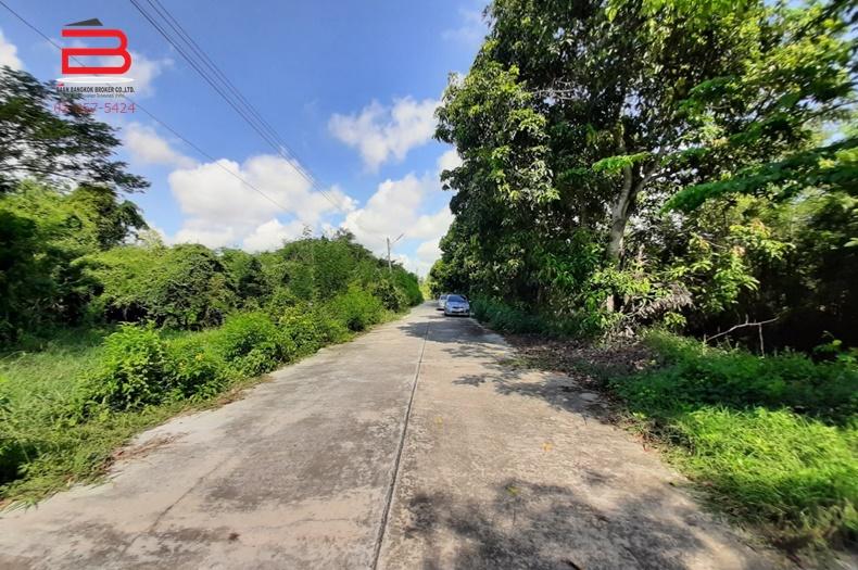 ที่ดินถมแล้ว โครงการ สวนเกษตรไผ่ขวาง เนื้อที่ 279 ตรว. ถนนสุพรรณบุรี-ป่าโมก อ.เมือง จ.สุพรรณบุรี